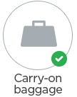 108x137-carryon-permitted