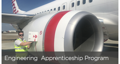 390x210-careers-appren