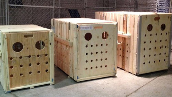 560x315-crate-example