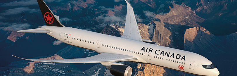811x260-aircan-plane