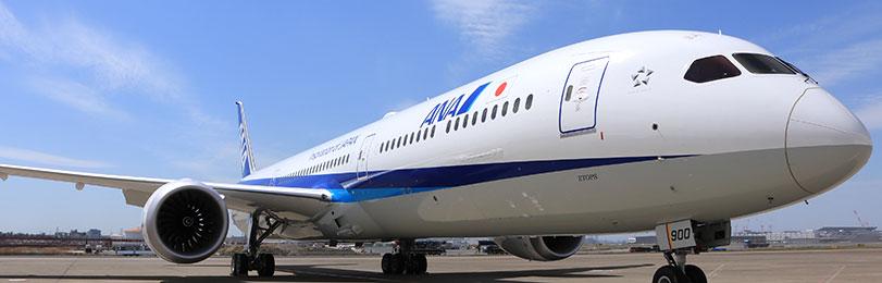 811x260-ana-plane