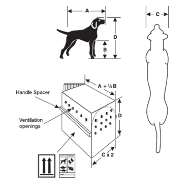 pet-container-dimensions